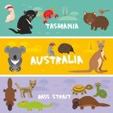Gulliga djur ställde in, bakgrund A för ungar för dingo för kängurun för sköldpaddan för krabban för ormen för vombaten för papeg Royaltyfri Foto