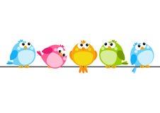 Gulliga färgfåglar vektor illustrationer