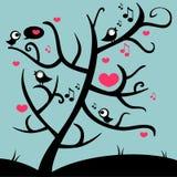Gulliga fåglar på treen Royaltyfria Foton