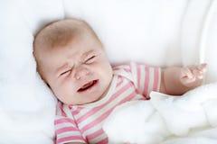 Gulliga förtjusande två månader behandla som ett barn den sugande näven Royaltyfri Fotografi