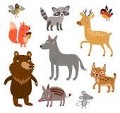 Gulliga Forest Animals royaltyfri illustrationer