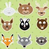 Gulliga Forest Animals - illustrationuppsättning Royaltyfria Foton
