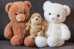 Gulliga gamla nallebjörnar och hund på soffan Fotografering för Bildbyråer