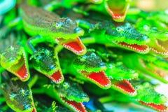 Gulliga gröna plast- krokodilleksaker som är till salu på leksaken, shoppar Rubb Arkivfoton