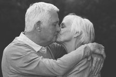 Gulliga höga par som varmt utomhus kysser arkivbild