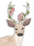 Gulliga hipsterhjortar med blommor vektor illustrationer