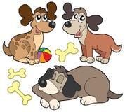 gulliga hundar för samling Royaltyfri Fotografi