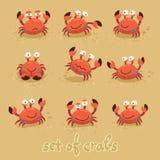 Gulliga krabbor, roliga tecken bränning för sommar för stenar för strandkustcyprus medelhavs- sand vektor Royaltyfri Fotografi