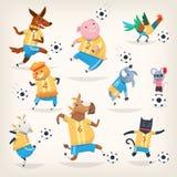 Gulliga lantgårddjur team spela fotboll på olika positioner Första lag Royaltyfri Bild