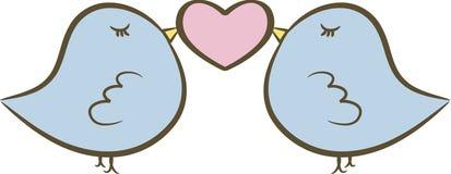 gulliga lovebirds två Royaltyfria Bilder