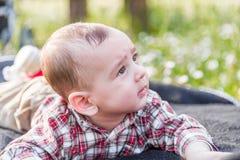 Gulliga 6 månader behandla som ett barn nyfiket men fridfullt Arkivfoto