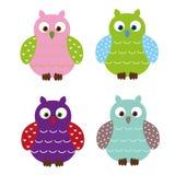gulliga owls Arkivfoto