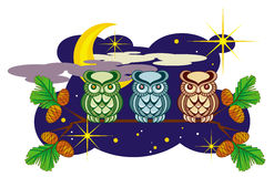 Gulliga owls Royaltyfria Foton