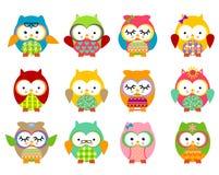 Gulliga owls Arkivbilder