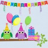 gulliga owls för födelsedagkort Royaltyfri Bild