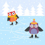 Gulliga owls för skridskoåkning Arkivfoton