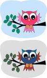 gulliga owls två Arkivfoto