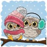 gulliga owls två Royaltyfri Bild