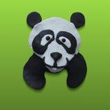 Gulliga Panda Head i grön bakgrund Arkivbilder
