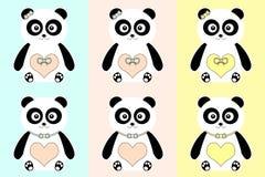 Gulliga pandor. Royaltyfria Bilder