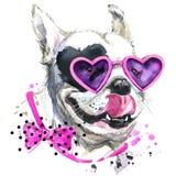 Gulliga söta hundT-tröjadiagram Den roliga hundillustrationen med färgstänkvattenfärgen texturerade bakgrund