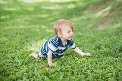Gulliga små behandla som ett barn i sommar parkerar på gräset Sötsaken behandla som ett barn utomhus- Royaltyfri Foto