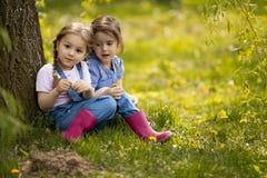 Gulliga små flickor på lantgård royaltyfri bild