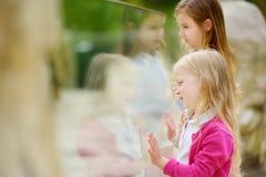 Gulliga små flickor som håller ögonen på djur på zoo på varm och solig sommardag Barn som håller ögonen på zoodjur till och med f Royaltyfria Bilder