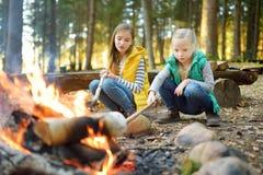Gulliga små systrar som grillar hotdogs på pinnar på brasan Barn som har gyckel på lägerbrand Campa med ungar i nedgångskog royaltyfria foton
