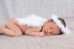 Gulliga sova nyfödda ängels tecken Fotografering för Bildbyråer