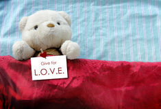 Gulliga Teddy Bear med valentin Royaltyfri Foto