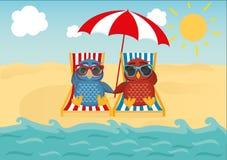 Gulliga två ugglor med solglasögon på semestern som ner ligger på stranden Royaltyfri Fotografi
