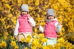 Gulliga tvilling- systrar, omfamning på ett bakgrundsfält med gula blommor, lyckliga gulliga och härliga systrar som har gyckel m arkivbilder