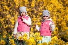 Gulliga tvilling- systrar, omfamning på ett bakgrundsfält med gula blommor, lyckliga gulliga och härliga systrar som har gyckel m royaltyfri bild