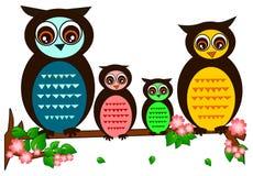 Owl Family Arkivfoto