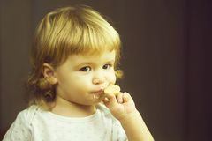 Gulligt äta för pys royaltyfri foto