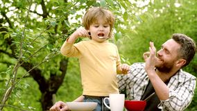 Gulligt barn som hemma äter frukosten i trädgården Litet barn?lder Adoptera ungen Stående av den härliga familjen som har frukost lager videofilmer