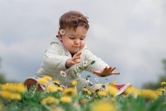 Gulligt begynnande barn som väljer blommor i ett blommafält royaltyfria bilder