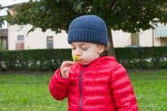 Gulligt behandla som ett barn besöket en lantgård Fotografering för Bildbyråer