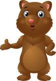 Gulligt behandla som ett barn brunbjörnen Arkivbilder