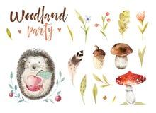 Gulligt behandla som ett barn den djura barnkammaren isolerade illustrationen för barn Teckning för vattenfärgbohoskog, akvarell, stock illustrationer