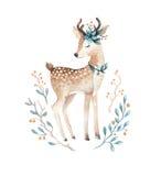 Gulligt behandla som ett barn hjortdjuret för dagiset, barnkammare isolerad illust vektor illustrationer