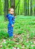 Gulligt behandla som ett barn pojken som går i vårskog Royaltyfri Fotografi