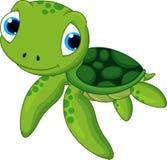 Gulligt behandla som ett barn sköldpaddan Royaltyfri Foto