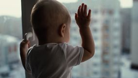 Gulligt behandla som ett barn står på fönsterbrädan och ser staden med intresse stock video