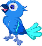 Gulligt blått posera för fågel Royaltyfri Bild