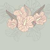 gulligt blom- för bakgrund Arkivbild