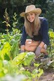 Gulligt blont arbeta i trädgården på solig dag Royaltyfria Foton