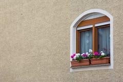 Gulligt europeiskt fönster på bakgrund för stuckaturväggtextur med kopian royaltyfri foto