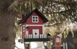 Gulligt fågelhus i ett träd royaltyfria foton